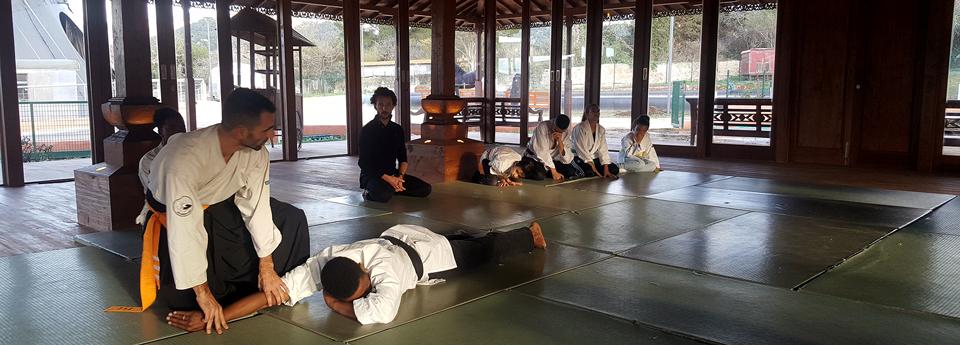 AIKI VUDAO - école vietnamienne arts martiaux